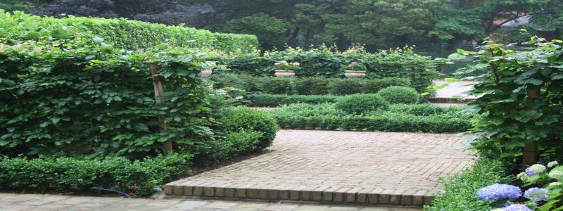 jardins 2007 (16).jpg