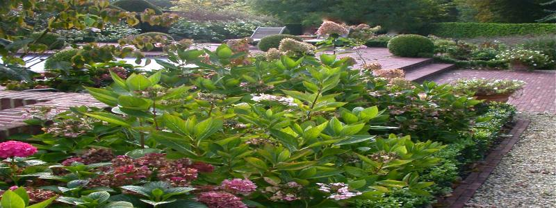 jardins divers oct 2009 053_2.jpg