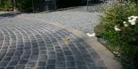 Jardins divers sept 2005 020.jpg