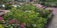 jardins divers oct 2009 053.jpg